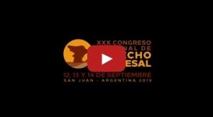 XXX Congreso Nacional de Derecho Procesal - SJ 2019 - Video 1/4