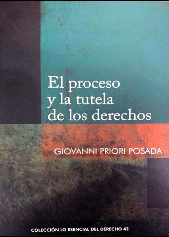 El proceso y la tutela de los derechos